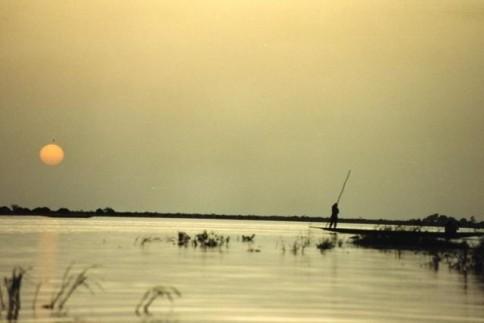 African Boatman323