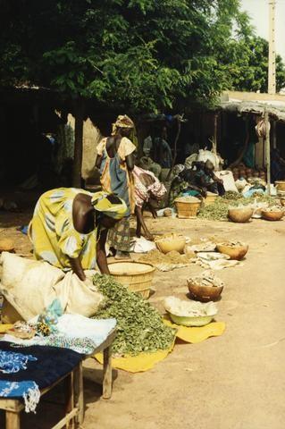 African Food Market480
