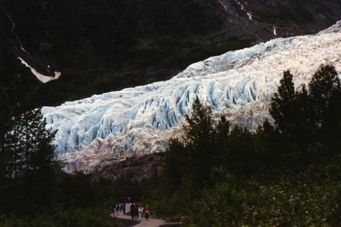 Alaska Exit Glacier322
