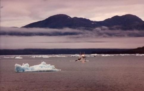 Alaska Commercial Fishing 02307