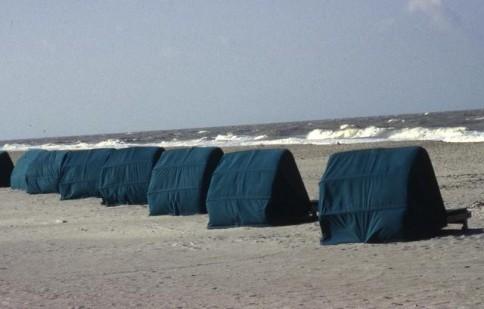 Florida Beach309