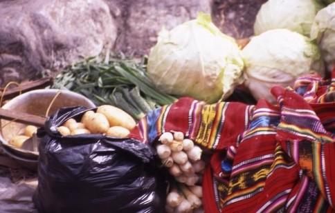 Guatemala Market with Shawl309