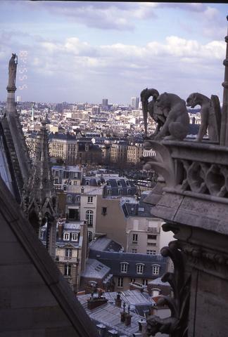 Paris w gargoyles_tif480